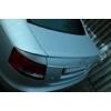 "Задний спойлер ""Сабля"" на Audi A6 2004-2007 (AD-TUNING, AA-121)"
