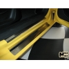 Накладки на внутренние пороги для Seat Leon II 2005-2013 (Nata-Niko, P-SE06)