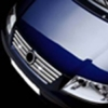 НАКЛАДКИ НА РЕШЕТКУ РАДИАТОРА (НЕРЖ.) 8-ШТ. ДЛЯ VW SHARAN 2000-2004 (OMSA PRIME, 7536082)