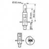 Авто-лампы H1 12V 55W P14.5S PREMIUM 1 шт. (Philips, PS 12258 PR C1)