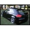 Задний спойлер (Бленда) для  Audi A3 (8P) 2003-2011 (DT, 12007)