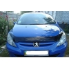 Дефлектор капота для Peugeot 307 2001-2005 (VIP, PG02)