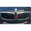 РЕШЕТКА РАДИАТОРА (ХРОМ) ДЛЯ BMW X6 (F16) 2015+ (KINDLE, X6-C53)