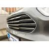 Накладки на решетку радиатора (нерж., 4 шт.) для Ford Courier 2014+ (Omsa Prime, 2625081)