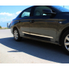 Молдинги на двери (нерж., 4 шт.) для Renault/Dacia Duster 2010-2017 (Omsa Prime, 9600099)