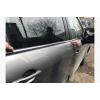 Нижние молдинги стекол для Renault Scenic/Grand Scenic 2009+ (Carmos, car60987)