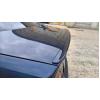 Задний спойлер (Сабля) для Bmw 3-series (E46) 1998-2007 (Lasscar, 1LS 201 608-204)